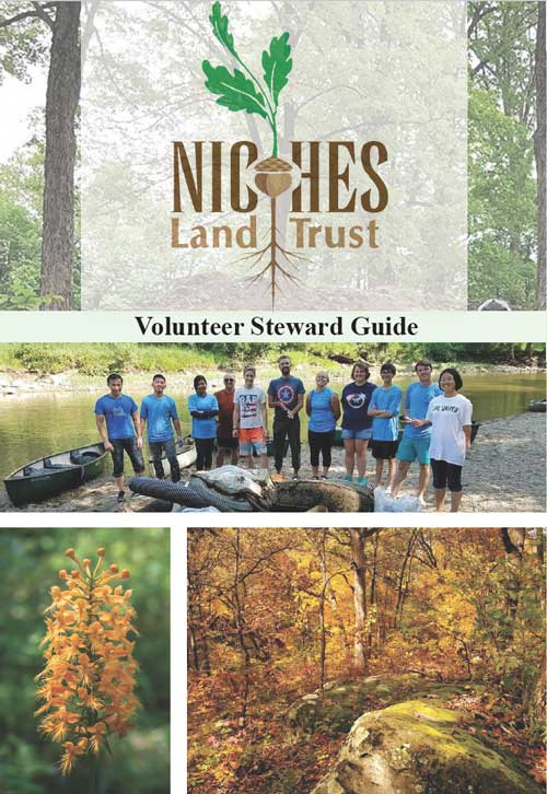 Cover of the Volunteer Steward Guide PDF